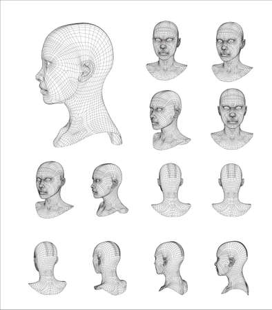 Wireframe head 3d model vector illustration  イラスト・ベクター素材