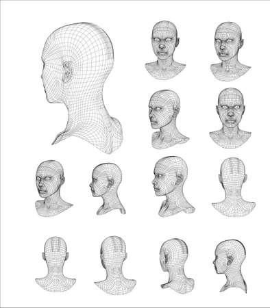bust: Wireframe head 3d model vector illustration Illustration