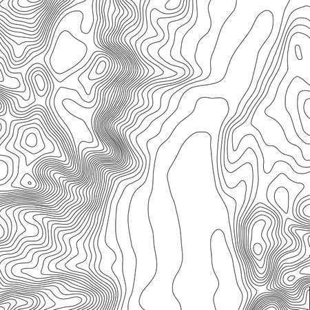 elevate: Topographic map background with space for copy . Line topography map contour background , geographic grid abstract vector illustration . Abstract geometric lines .