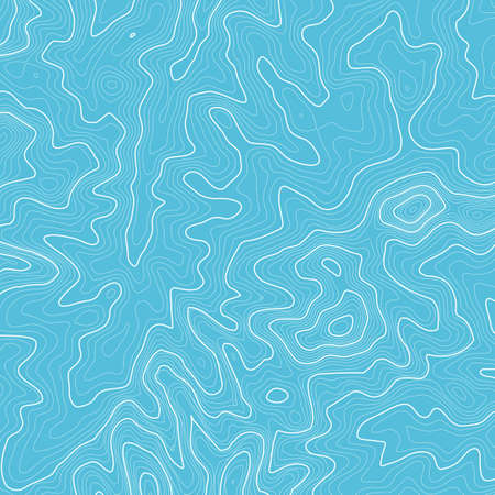 Line topography map contour background , geographic grid abstract vector illustration