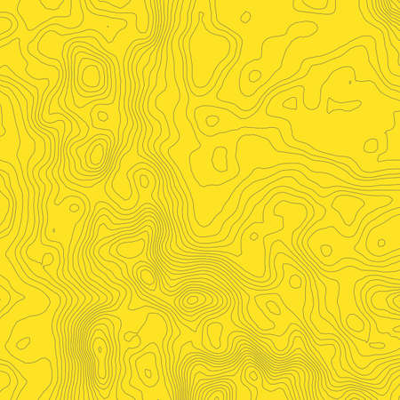 Topographic map concept with space for your copy.