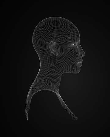 3d human head wireframe vector side view  illustration Illustration