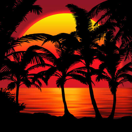 Sunset beach with palms. Sunset landscape with colorful sunset sky gradient.Red Sun reflecting in the water 矢量图像