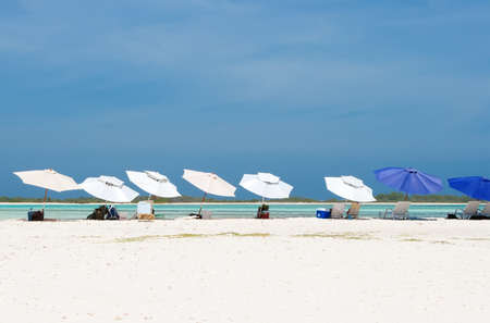 desolated: Many parasols in row on the beach of Los Roques, Venezuela