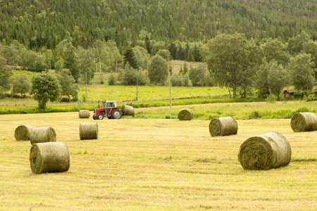 Farmer harvesting hay bales