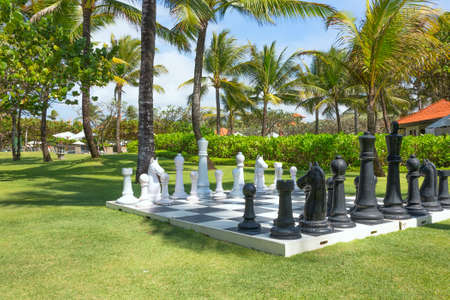 black giant: Large outdoor chess board on the grass Stock Photo