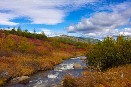 Autumn landscape of sream among the hills