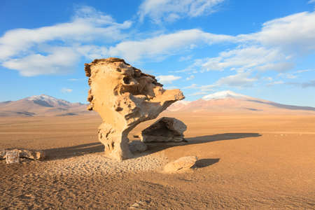 Rock formation Arbol de Piedra in desert of Bolivia photo