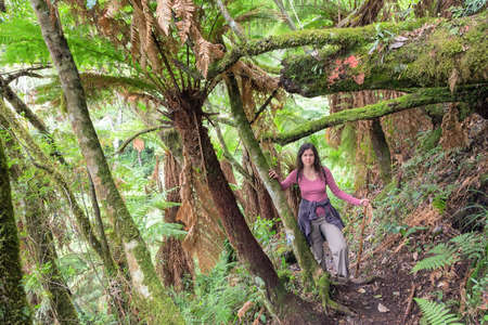 Woman hiking through lush green jungle in Bolivia photo