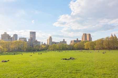 晴れた日のニューヨーク セントラル ・ パーク