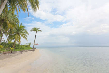 Starfish beach on the archipelago Bocas del Toro Panama photo
