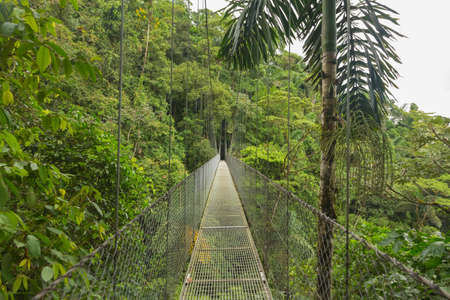 Suspended bridge at natural rainforest park Costa Rica Stock Photo