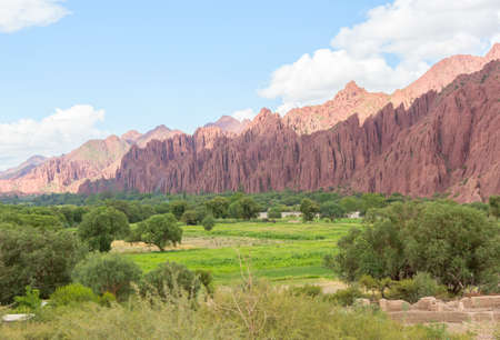 desert scenes: Landscape of colored mountains and green valley