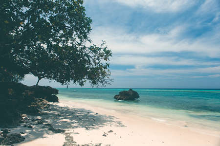 asia pacific: beautiful coastline, turquoise view of the sea with tropical tree and stone, minimal subject, Philippines Asia, Pacific Ocean