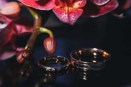 beautiful gold wedding rings on the brides preparations Stock Photo