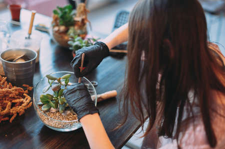 Master class on planting succulents in the florarium of glass The Floriana. Girls plant plants. Hands of the girl close-up. Making a gift and a piece of interior handmade. DIY present