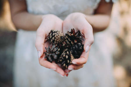 pine cones in the hands of the bride for a walk