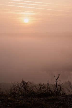 gentle soft light pink dawn on the big lake, Sunrise, calm, fog, horizon line Stock fotó