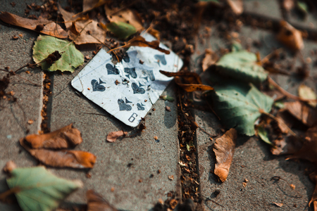 playing card on the ground with yellow leaves Stock Photo