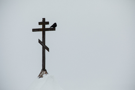Telephoto view of a bird perched on a Christian cross atop and an old church spire