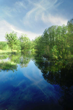 blue sky and river with reflection of trees  Stock Photo