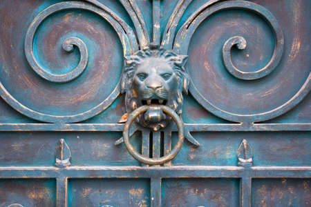 picture of dirty dooor with lion and knocker photo
