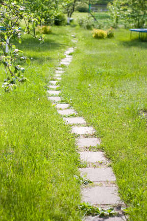 green lush lown with curve path from bricks  photo