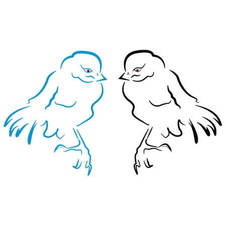sillhouette: Birds sillhouette