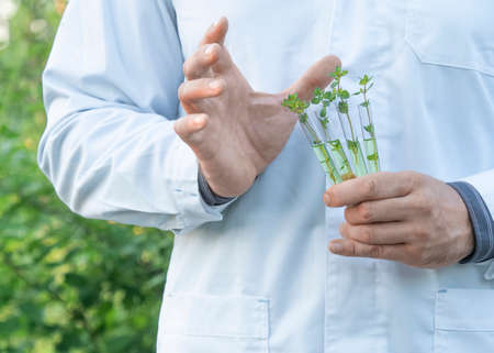Researcher in a white coat showing test tubes with green sprouts. Outdoor. Standard-Bild - 149950542