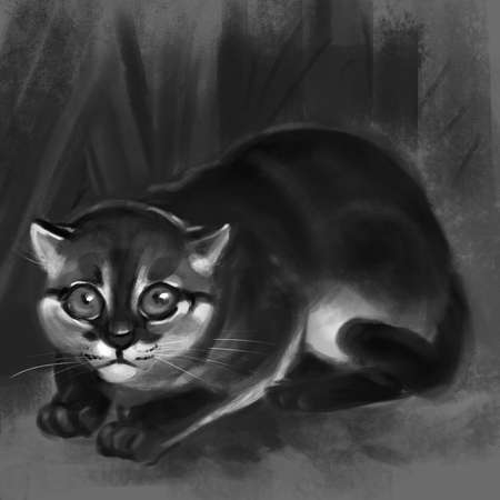 illustration of a Flat-headed Cat