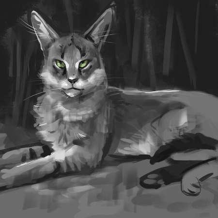 illustration of a jungle cat 写真素材
