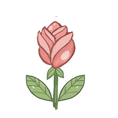 illustration rose on white background