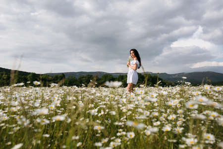 Cute little girl in a field of daisies Stock Photo