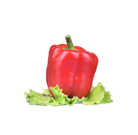 Red pepper with green salad in water splashes on white background