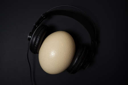 Ostrich egg in headphones at black background