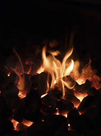 bituminous coal: the bright flame and live coals in a smithy