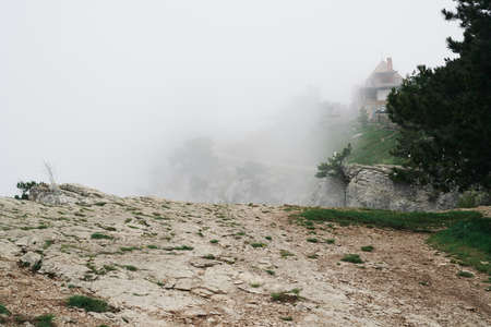 Nature, mountains, cliff, fog, rocks, trees, abyss. Stock Photo
