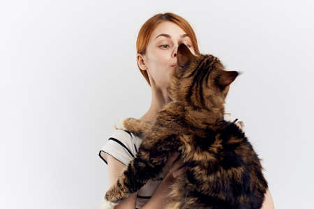 Young beautiful woman on white isolated background holds a cat, pets. Stock Photo