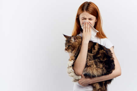 Beautiful woman on a white background holds a cat, maine coon, allergies to pets. Stock Photo