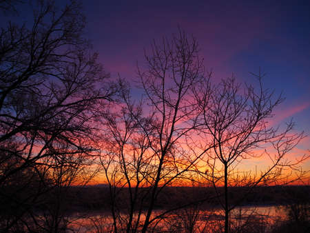 Winter dawn on the river Bank. The forest on the background of the dawn. Stock Photo