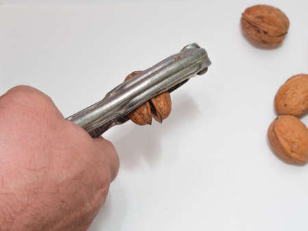 A man holds a nutcracker and splits a walnut with one hand into many pieces against the gray background of the table. The concept of brute force and negligence.