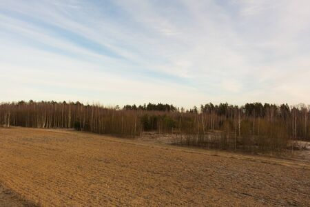 small field: Small field with dry grass. Fantastic winter landscape.