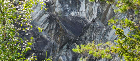Marble rock cliff edge with trees