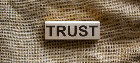 Wooden block form the word 'trust' on beautiful canvas background. Business concept.
