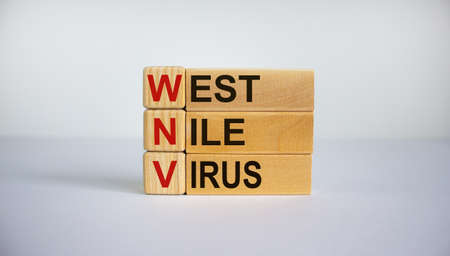 Concept words 'WNV, West Nile virus' on cubes and blocks on a beautiful white background. Business concept. Copy space.