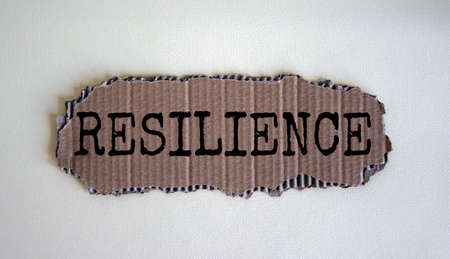 Words 'resilience' on the piece of cardboard on white fon. Beautiful white background, copy space. Business concept.