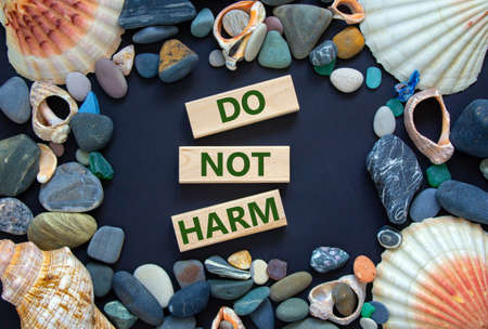 Do not harm symbol. Words 'Do not harm' on wooden blocks on a beautiful black background. Sea stones and seashells. Business and do not harm concept.