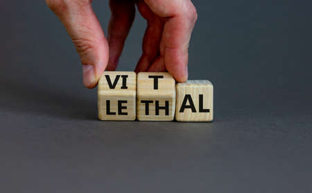 Vital vs lethal symbol. Businessman turns wooden cubes and changes the word 'lethal' to 'vital'. Beautiful gray background, copy space. Business and vital vs lethal concept. Standard-Bild