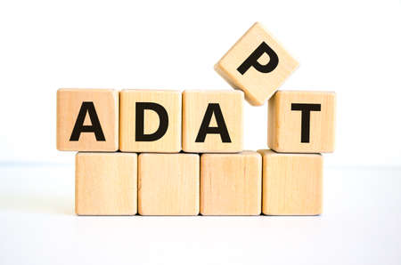 Adapt symbol. The concept word 'adapt' on wooden cubes. Beautiful white table, white background. Business, adaptation and adapt concept. Copy space.