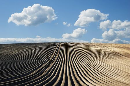 furrows: Agricultural field after ploughing with furrows Stock Photo